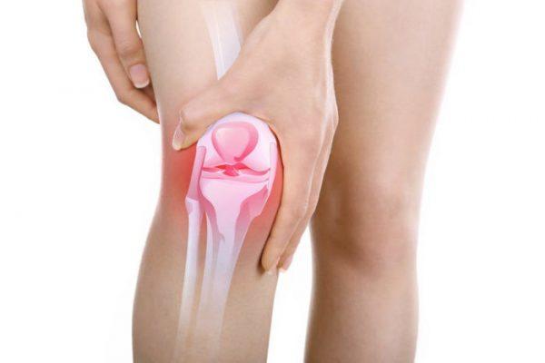 درمان گیاهی آرتروز زانو